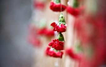suresh + reshmi - Wedding